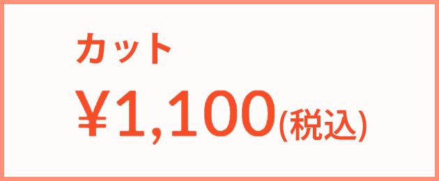 カット:1,000円(税込)